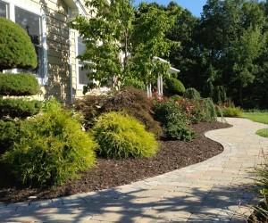 Nursery, Plantings, Patios, design, Scovills landscape, landscape design, landscaping, landscapes, landscape patio design